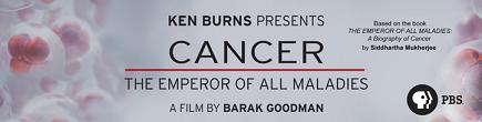 Cancer-header-banner-2