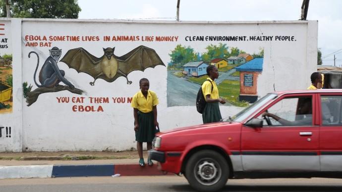 billboard bats